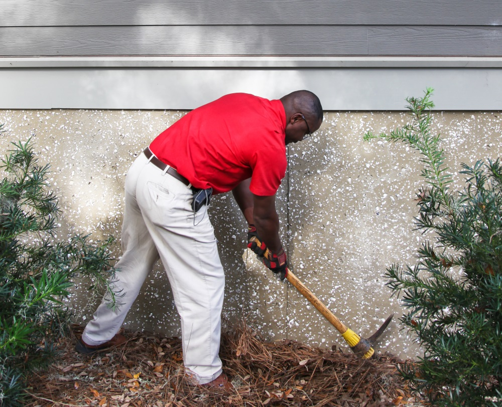 5 Things You Should Be Doing To Prevent Termites In Your