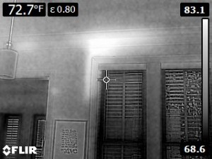 Formosan carton detected by FLIR technology