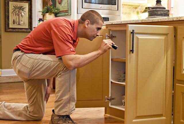 pest control technician inspecting a cabinet