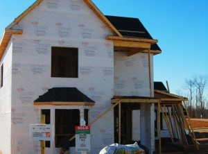 termite-control-(on-new-construction-page)-opt