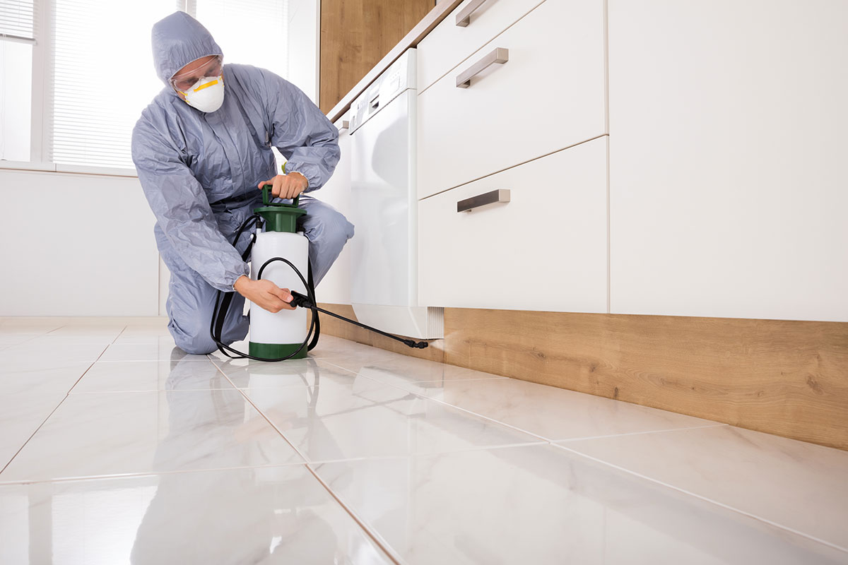pest exterminator in protective gear inspecting a kitchen