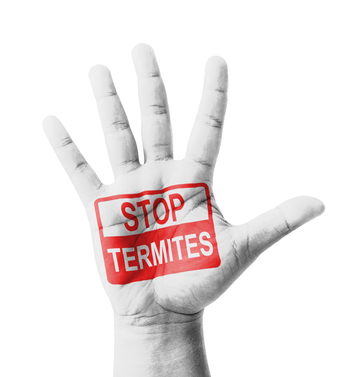 hand with splayed fingers with the words 'stop termites' in red
